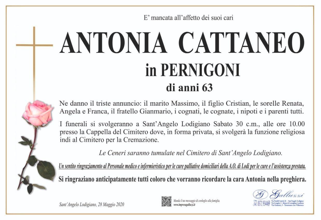 Antonia Cattaneo