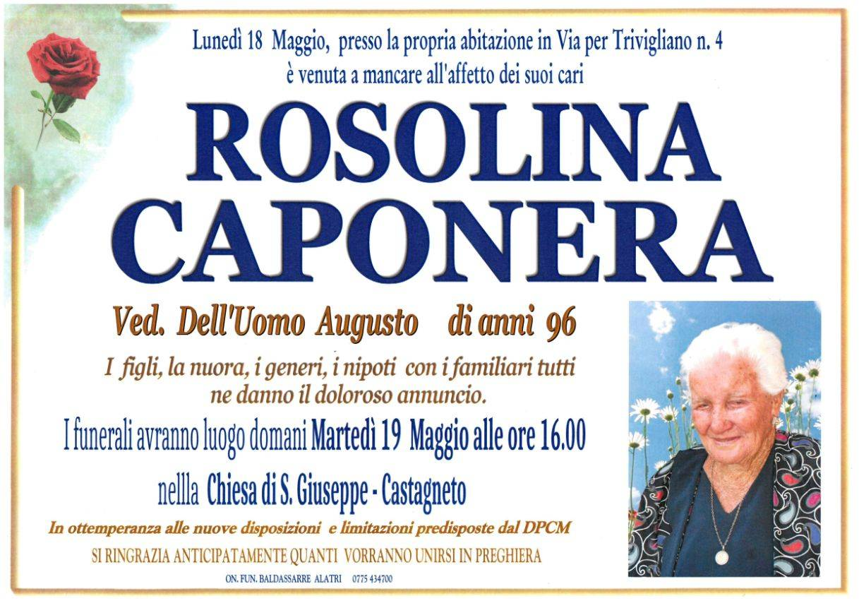 Rosolina Caponera