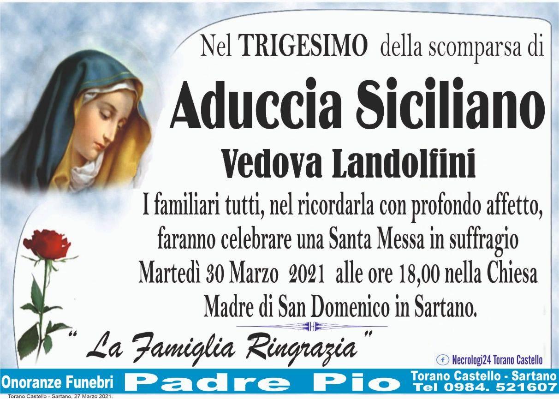 Aduccia Siciliano