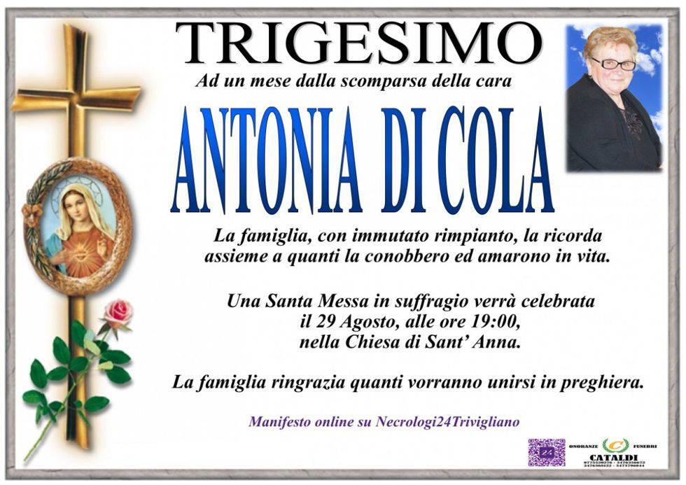 Antonia Di Cola