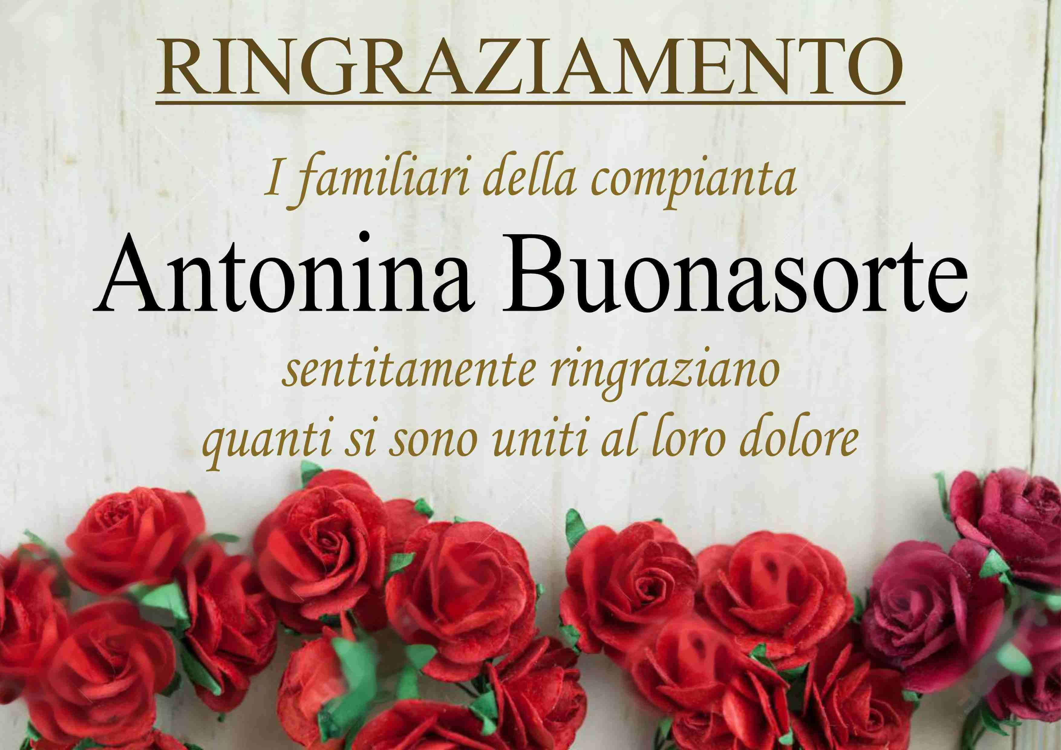 Antonina Buonasorte