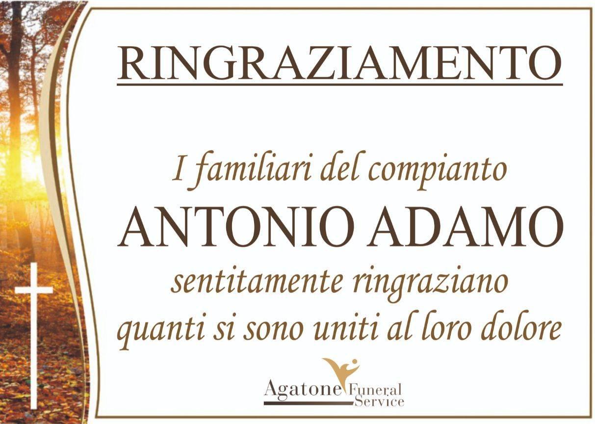 Antonio Adamo