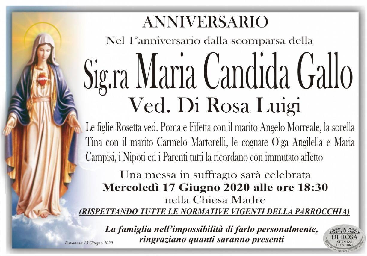 Maria Candida Gallo