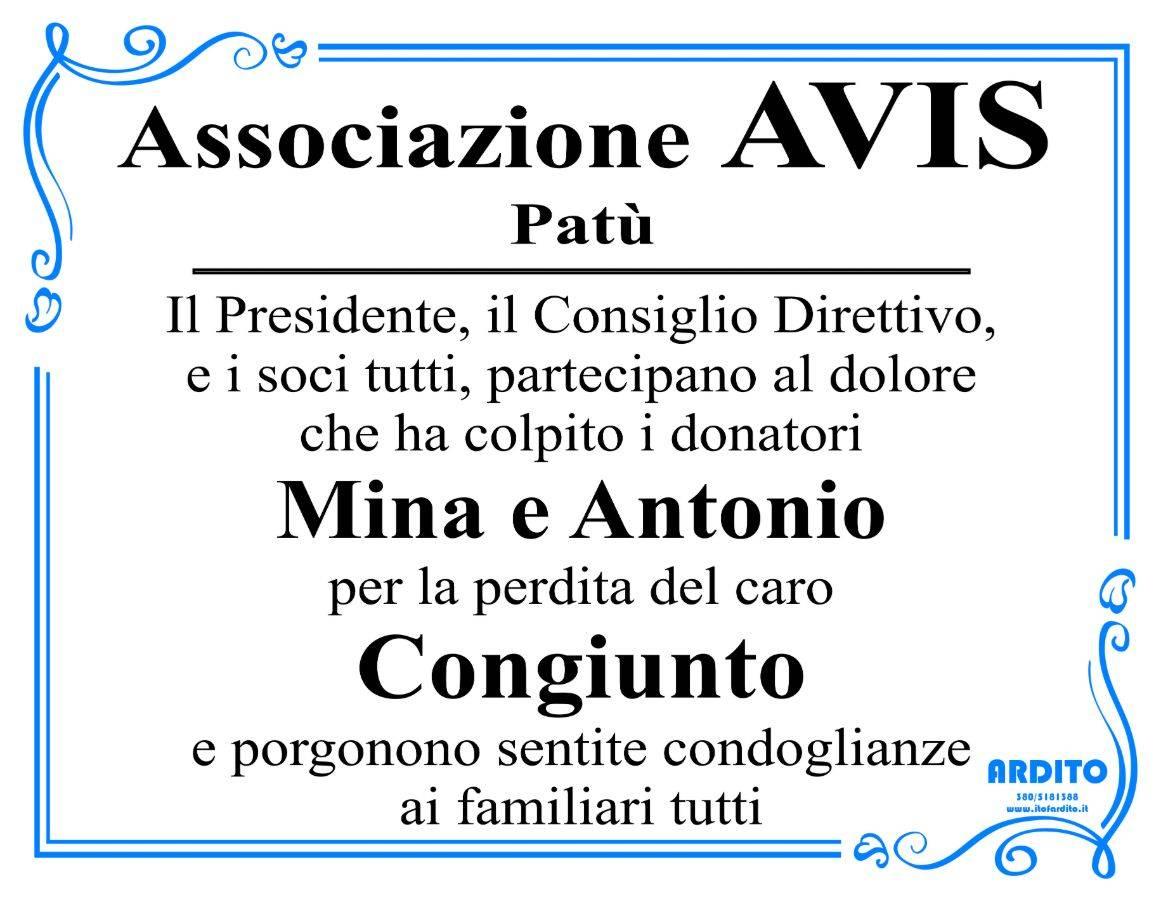 Associazione Avis - Patù