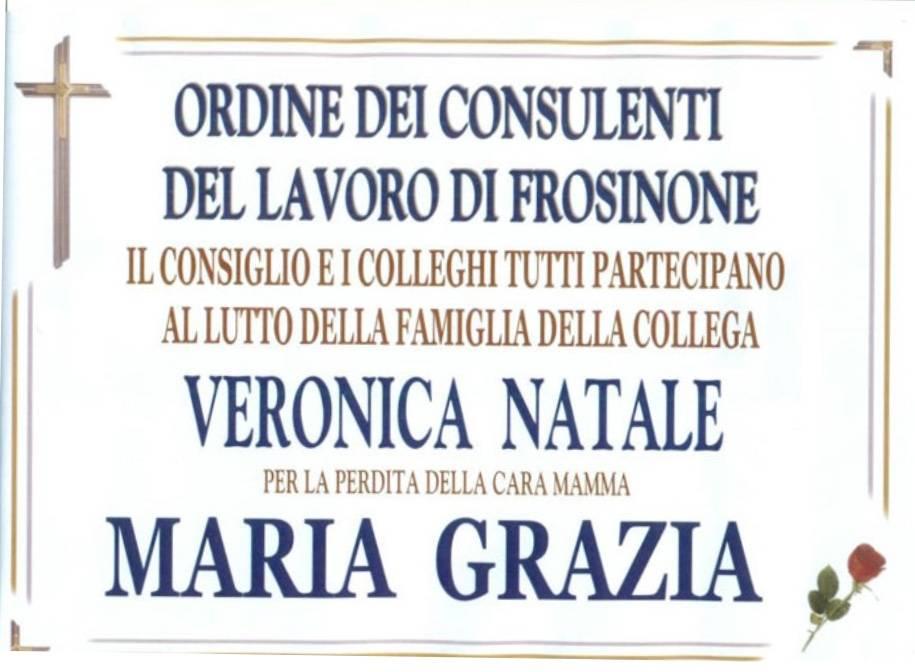 Ordine dei Consulenti di Frosinone 2