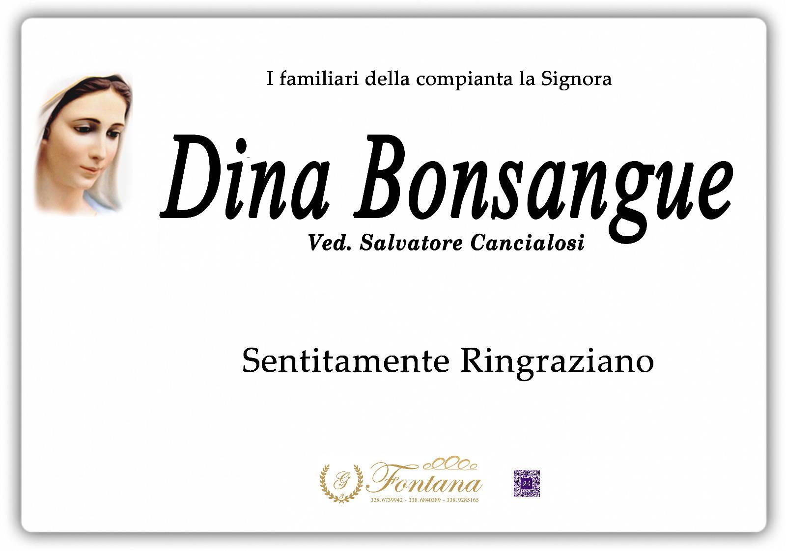 Dina Bonsangue