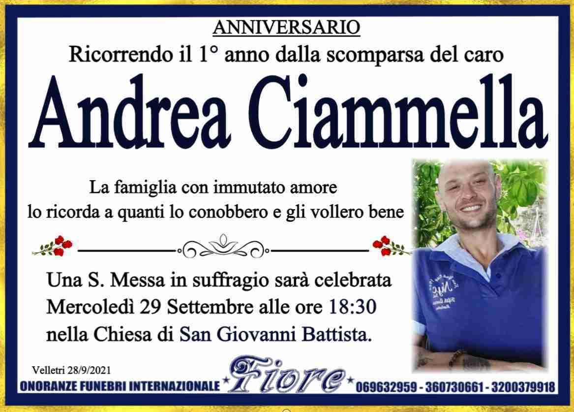 Andrea Ciammella