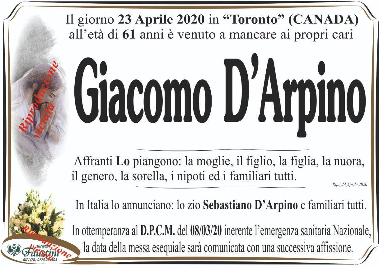Giacomo D'Arpino