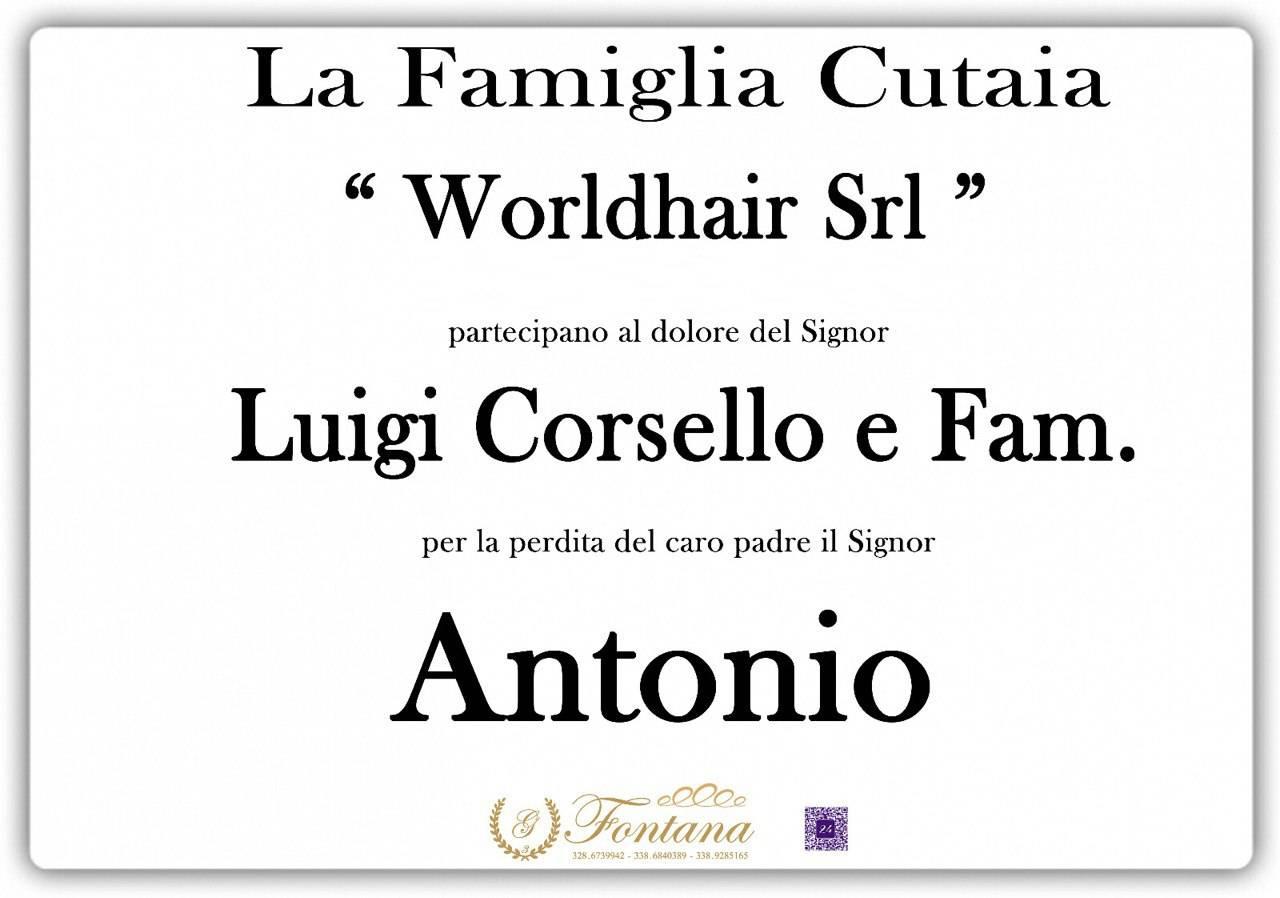 """Famiglia Cutaia """"Worldhair Srl"""""""
