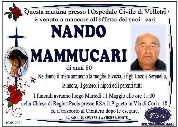 Nando Mammucari