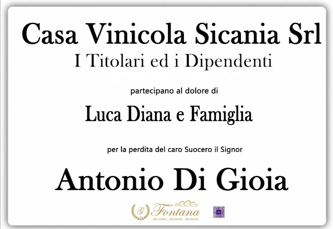 Casa Vinicola Sicania Srl - Titolari e dipendenti