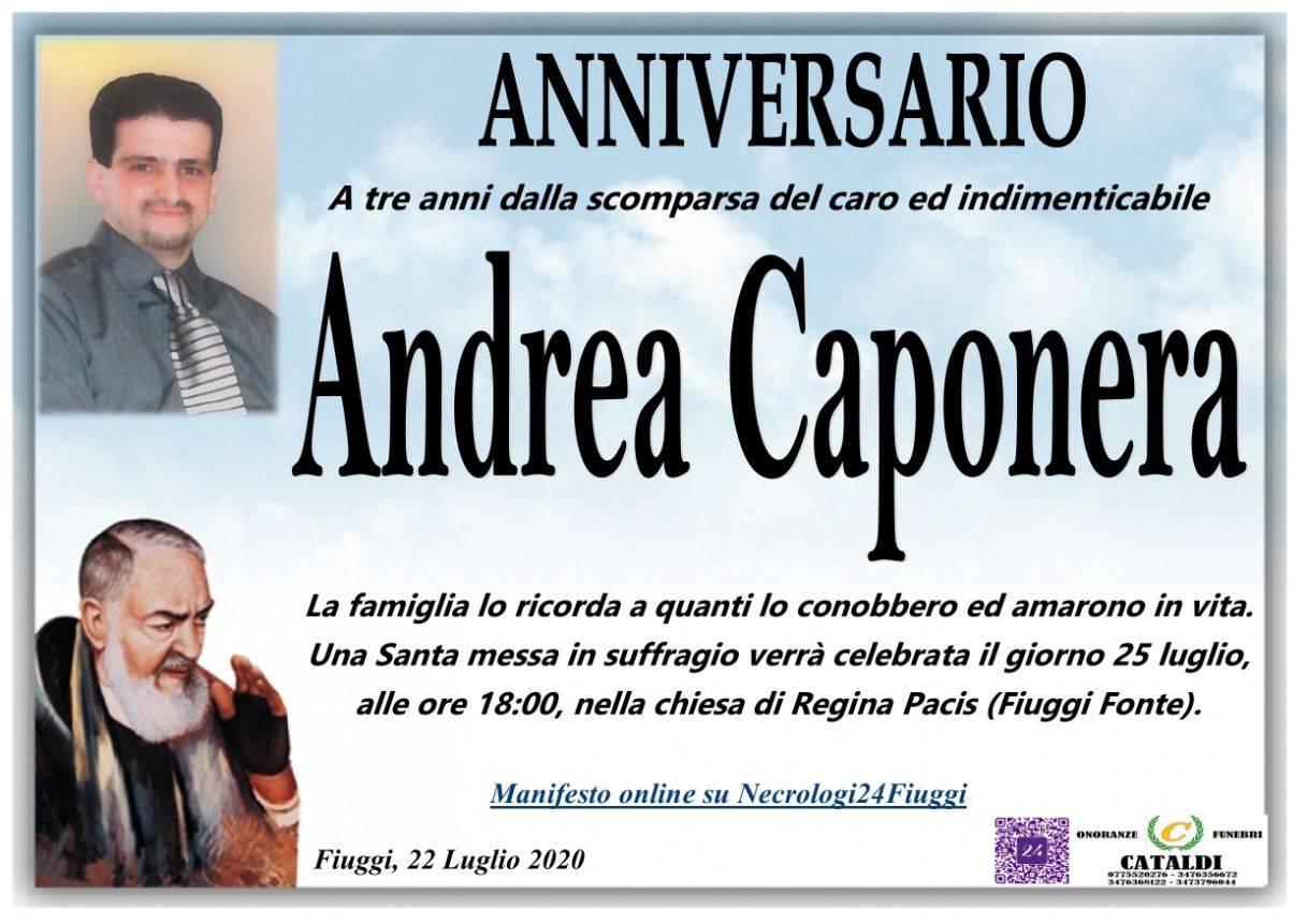 Andrea Caponera