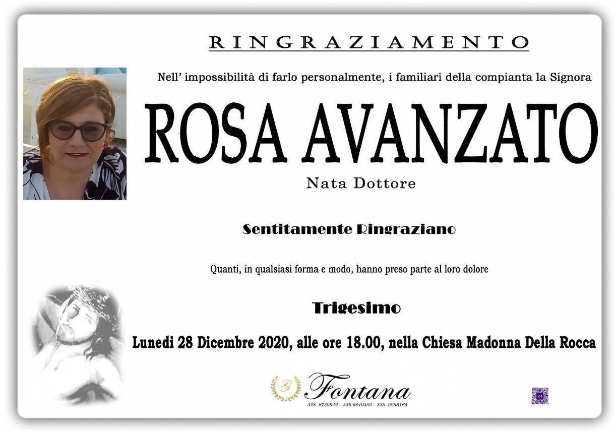 Rosa Dottore