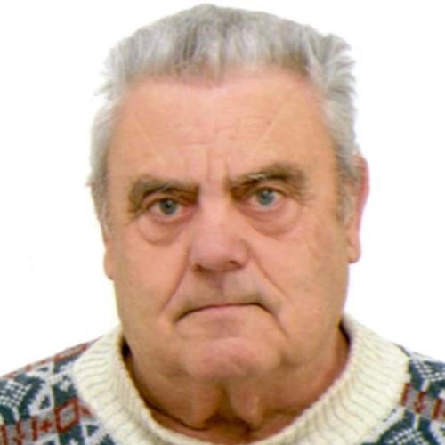 Gino Melina