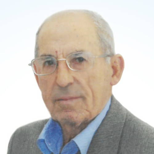 Giacomo Vanella